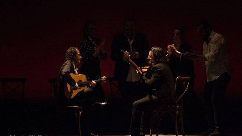 flamenco-farruquito-maria-d-cajas_002